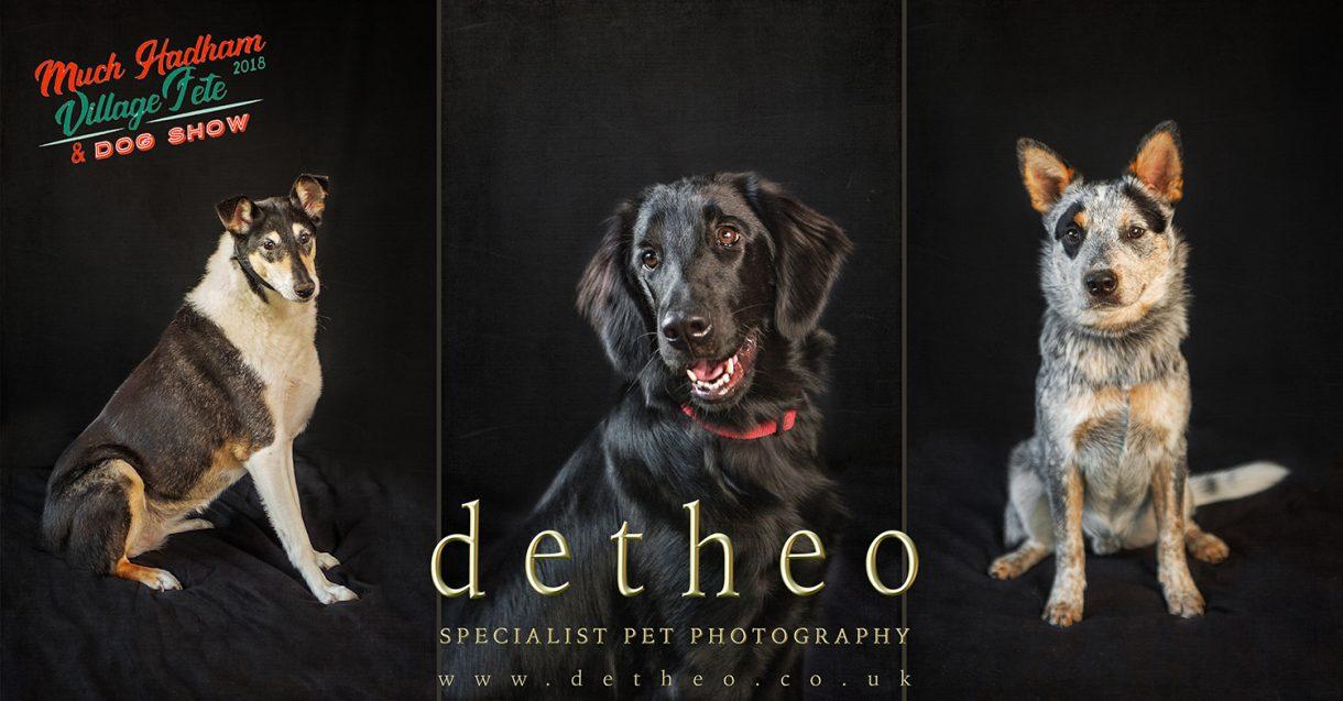 Dog Show 2018 Much Hadham Hertfordshire