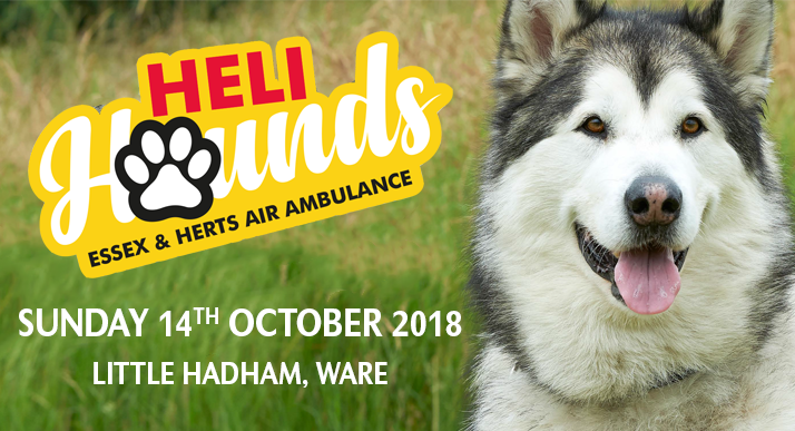 Heli Hounds Charity Dog Walk