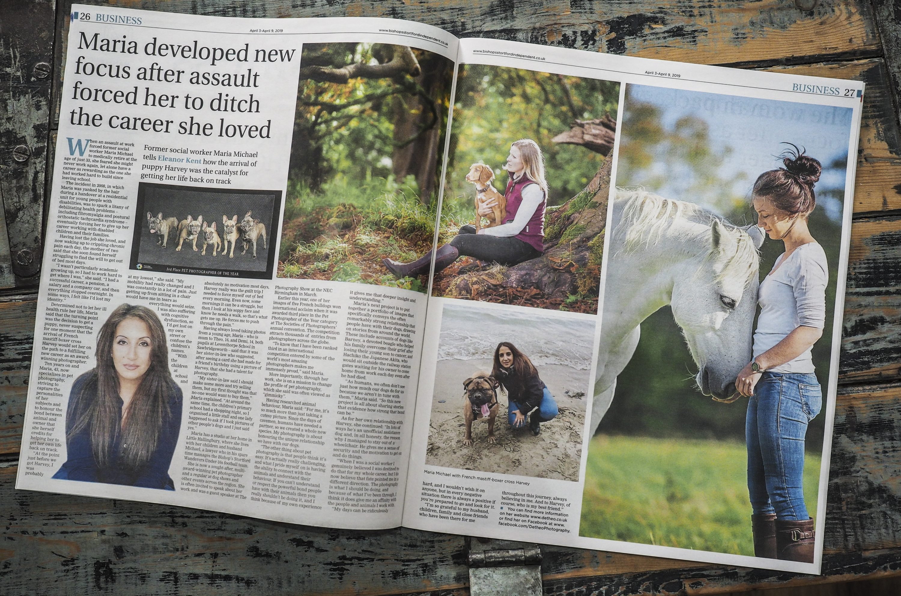 Detheo Photography Makes The Papers Again in a newspaper article all about there amazing pet photography.