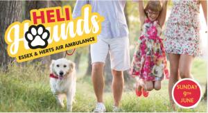 Heli Hounds Charity Dog Walk