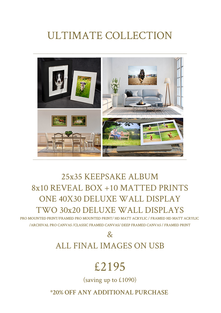 Ultimate_Collection_Product_Photography_Pricing